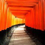京都の赤い鳥居がいっぱい並んでいる神社の名前は?行き方や住所もご一緒に!