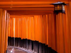伏見稲荷大社の鳥居がいっぱいならんでいる写真