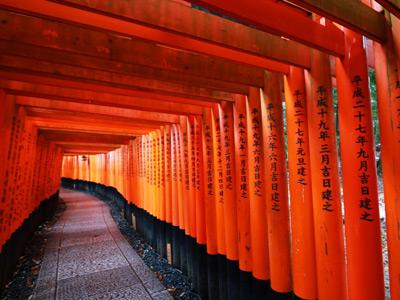 京都の鳥居がいっぱい並んでいる伏見稲荷大社の千本鳥居の写真