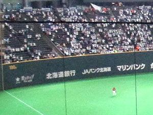 球場のフェンスの高さランキング1位の札幌ドームの外野フェンスの写真