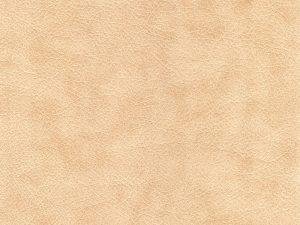 牛革とヌメ革の違いは?ヌメ革の種類と育て方