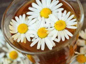 カモミールティーと紅茶の違いと効能を調査!美味しいカモミールティーの飲み方とは?