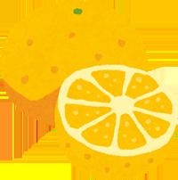 グレープフルーツのイラスト