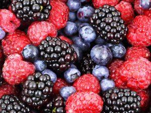 家庭菜園で育てやすいフルーツは?家庭菜園の簡単な育て方のポイントをご紹介!