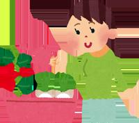 野菜や果物を家庭菜園で育てているイラスト