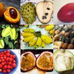 沖縄フルーツの旬を季節ごとに紹介!沖縄フルーツの美味しい食べ方もご一緒に!