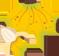 島バナナのイラスト
