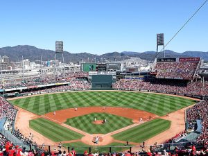 プロ野球の本拠地球場の広さランキング!収容人数・外野・フェンス・ホームランの出やすさも!