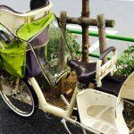 自転車に子供を前後にふたり乗せて3人乗るのは法律に違反しない?